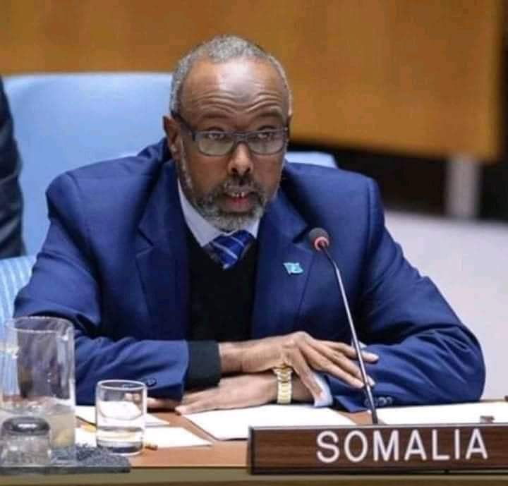 Somali government files complaint against Kenya to Security Council