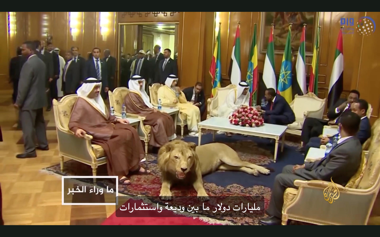 [Daawo] Emirate-ka, Ethiopia ,Saudi Arabia oo garabsanaya Mareykanka qorshaheey rabaan iney Somalia ku qabsadaan ?