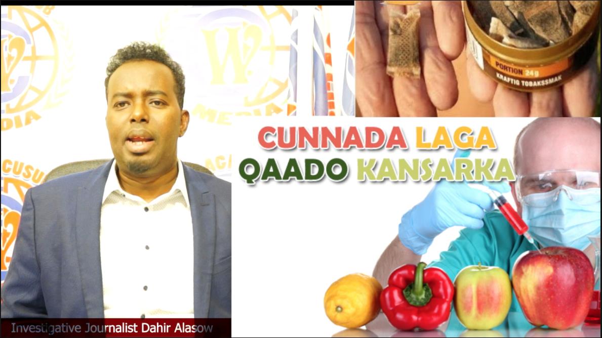 [DAAWO AKHRI - CADEYN] Waxyaabaha sababa kansarka Somalida laayay ? Investigative report .