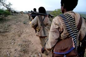 OGADEN NATIONAL LIBERATION FRONT, ONLF WILL DEMAND A REFERENDUM ON SELF-DETERMINATION FOR SOMALI REGION