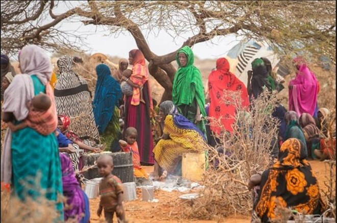 Aid organizations urge swift measures to support displaced Ethiopians