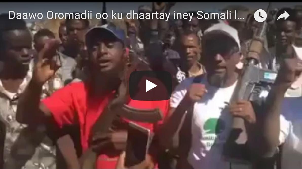 [Daawo] Oromadii oo ku dhaartay iney Somali leeynayaan si ay Somali Galbeed uga saaraan