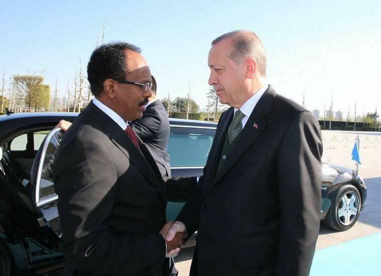 Somalia: Farmaajo Holds Talks With Host Erdogan