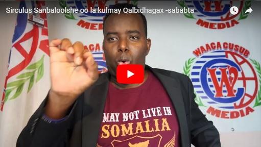 [Daawo] Sirculus Sanbaloolshe oo la kulmay Qalbidhagax -sababta..?