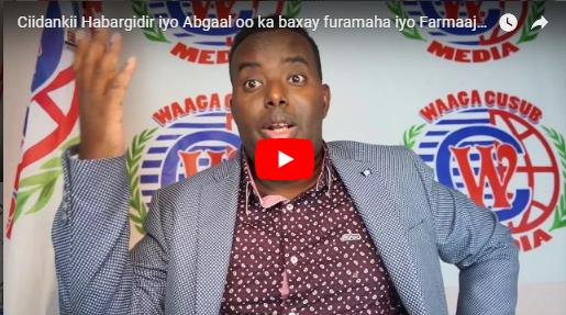 [Daawo] Ciidankii Hawiye oo ka baxay difaacyadii Shabeellooyinka iyo Farmaajo oo Xamar ka guuraa..?