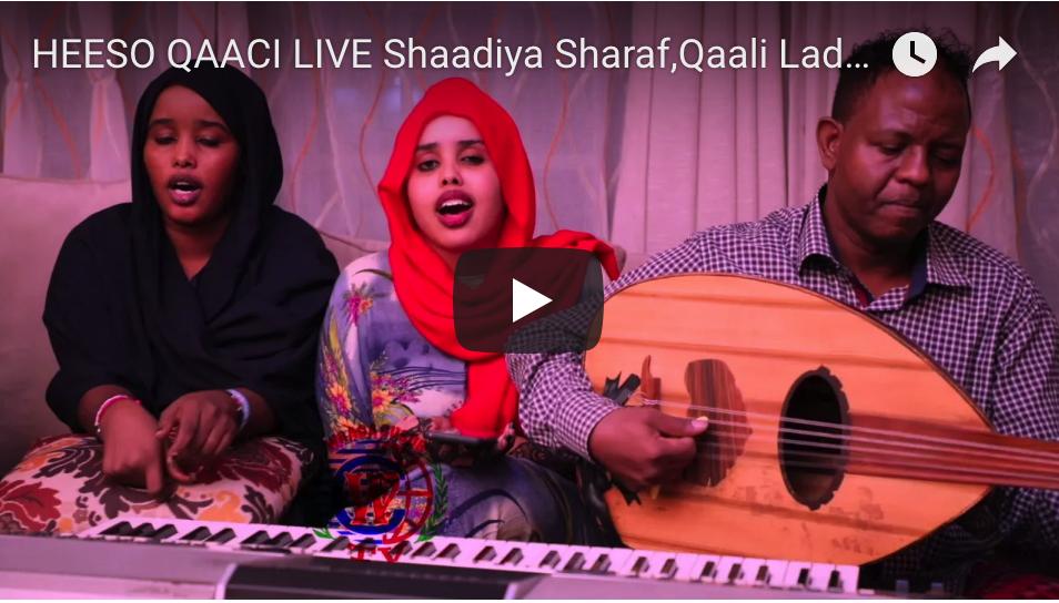 [DAAWO LIVE] Shaadiya Sharaf,Qaali Ladan,Nadiiro Nayruus Ft Dahir Alasow