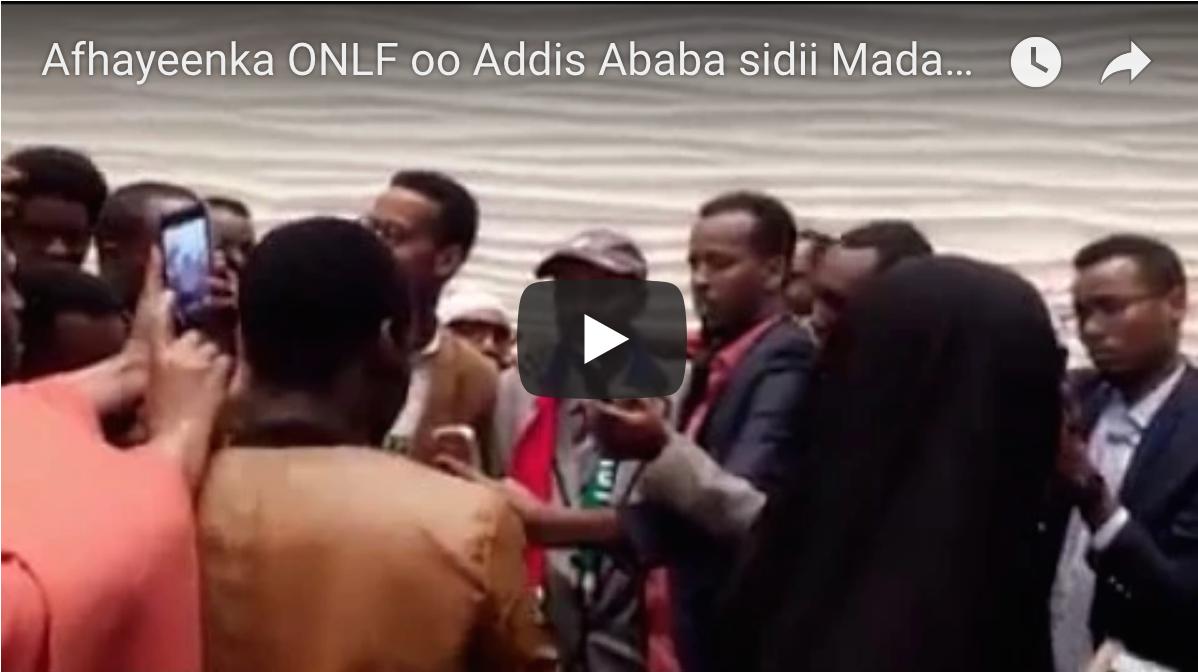 [Daawo] Afhayeenka ONLF oo Addis Ababa sidii Madaxweyne looga hortegay